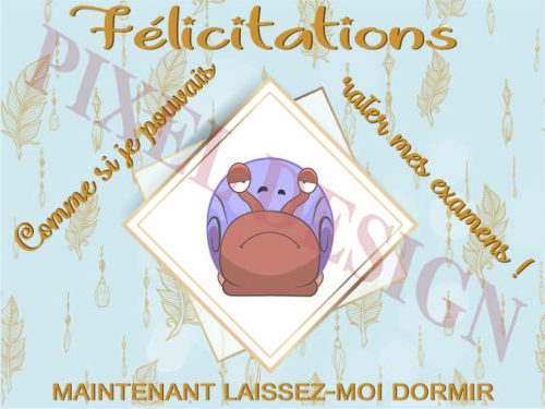 Félicitations_04MV