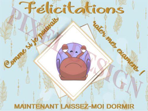 Félicitations_04MV